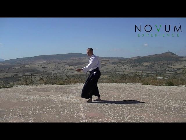 Happo Tsuki - Aikido Novum Experience - 合氣道 - 八方突き