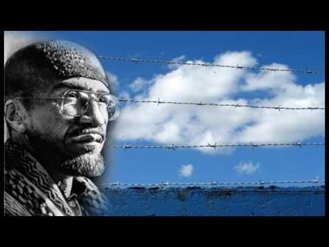 Imam Jamil Al-Amin prison interview