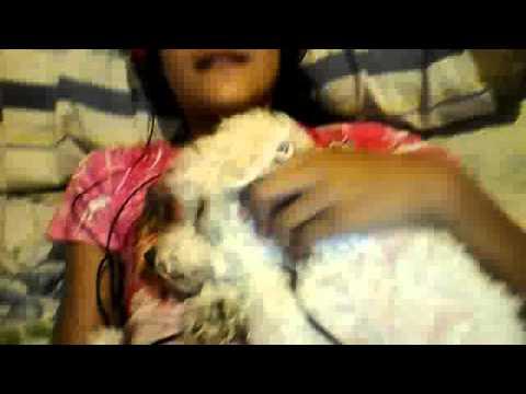 Video De Cámara Web Del 29 De Enero De 2014 15:47