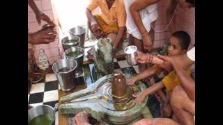 Shiva Lingam cleaning Puja in Pushkar (480pp quality)