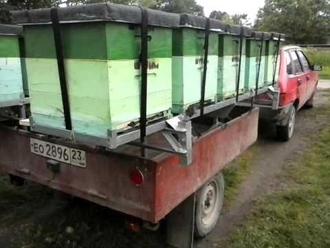 Платформа для перевозки пчёл в работе
