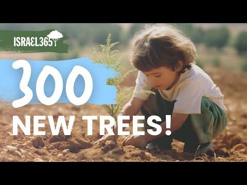 Planting 300 Trees On Tu Bshvat In Memory Of Amiad Yisrael Ish Ran