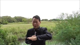 【今日の出来事と人物・用語集】<源頼朝・鎌倉入り>1180年(治承4年)...