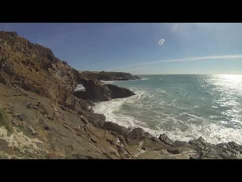Phonography : Sea Lions, Pacific Ocean, Baja California (28.242716, -114.113961)