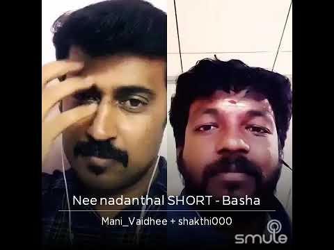 Nee Nadanthal Nadai Azhagu