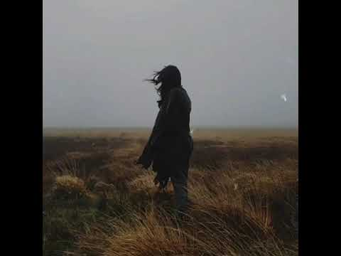 PGN x HADID - Gel (Audio)