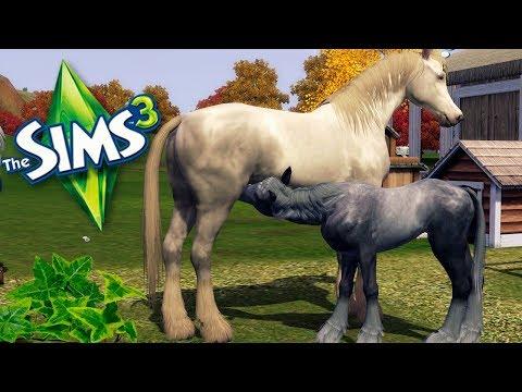 🐎The Sims 3 Koniara #16 -