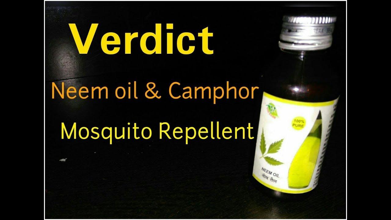 Verdict - Neem oil & Camphor | Mosquito Repellent | नीम तेल और कपूर से  मच्छर भगाओ -YouTube