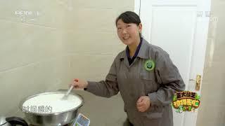 [正大综艺·动物来啦]视频中大熊猫宝宝喝的盆盆奶主要成分是什么| CCTV