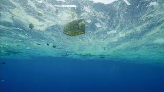 『プラスチックの海』予告