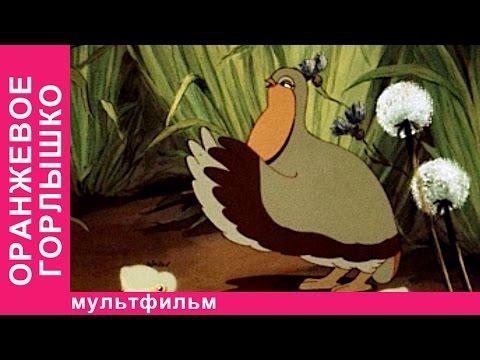 Оранжевое Горлышко. Советские мультфильмы. Союзмультфильм. StarMediaKids