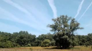 Парад самолётов в Чернигове.(Всё лето наблюдали массу пролетающих самолётов в небе над Черниговской губернией., 2015-08-29T07:28:34.000Z)