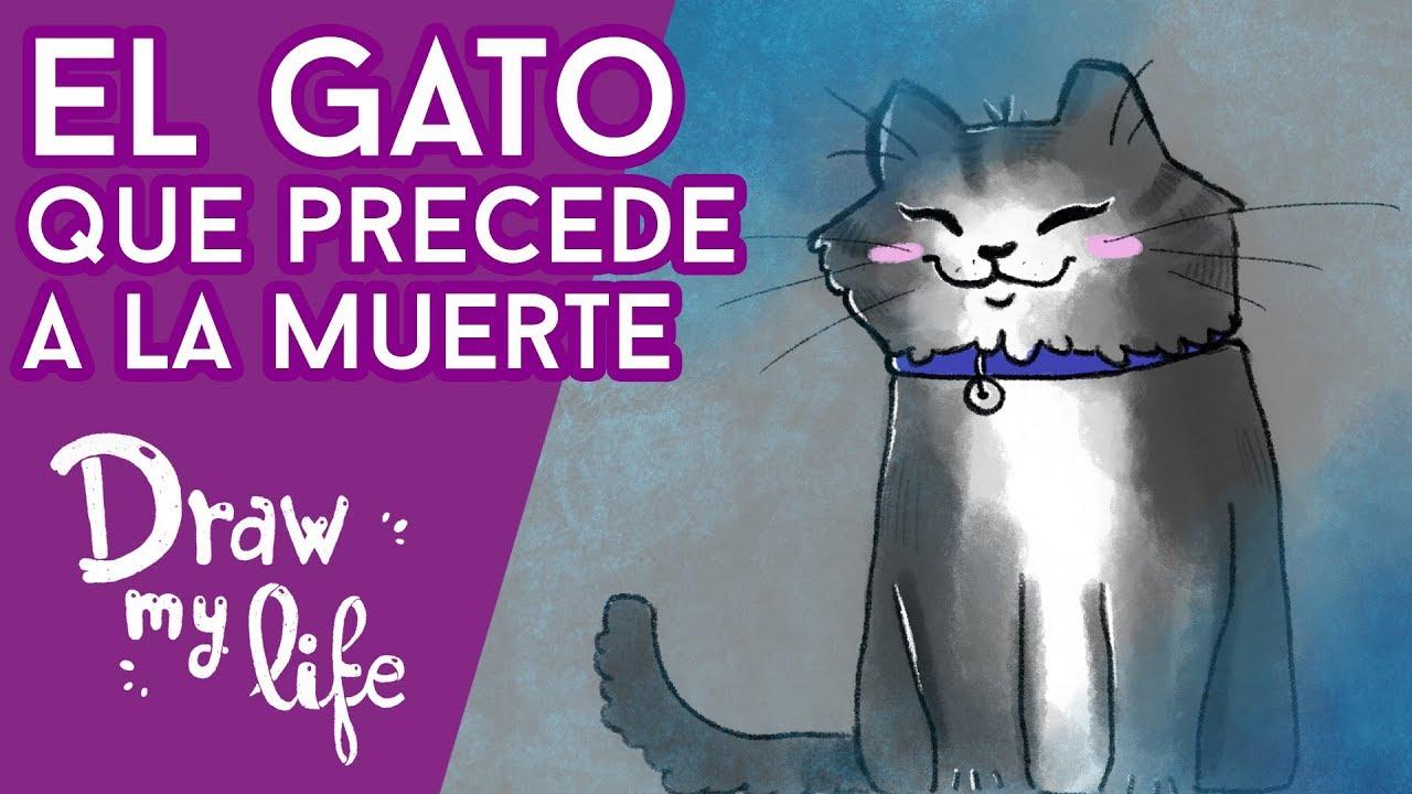 El GATO que ADIVINA tu MUERTE - Draw My Life