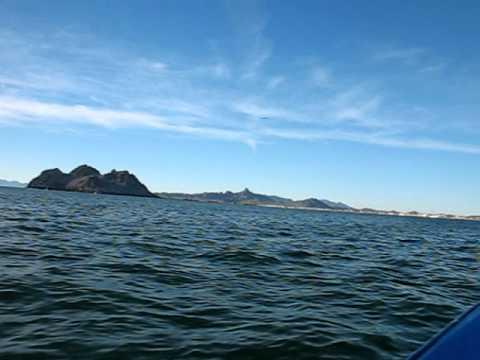 Bahia Kino 6 - On the high seas