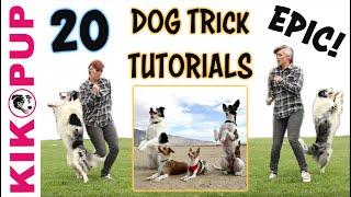 DOG TRICKS  20 Trick Tutorials!