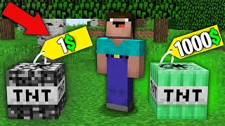 Minecraft NOOB vs PRO: NOOB BOUGHT BEDROCK TNT FOR 1$ VS EMERALD TNT FOR 1000$? Challenge trolling