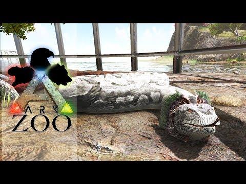 ARK ZOO - 45 : Aménagement des Titanoboas et déco des Grenouilles