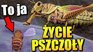 ŻYCIE PSZCZOŁY JEST CIĘŻKIE... | Bee Simulator