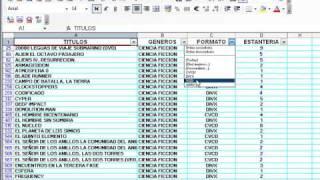 Videotutorial 6 de Excel