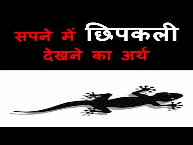 Sapne me Chipkali Dekhna | Lizard Dream Meaning, interpretation in hindi