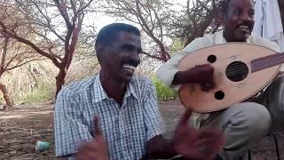عبد المنعم أب سم - قالوا لي سرو