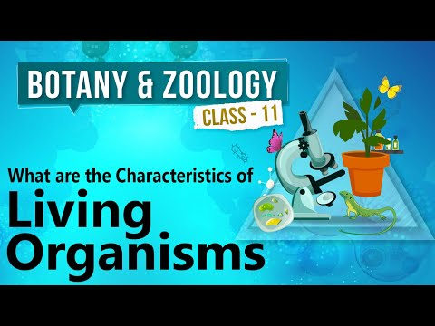 What Are the Characteristics of Living Organisms - Diversity in Organisms - Biology Class 11