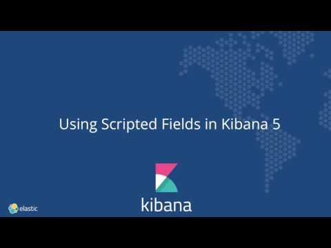 Using Scripted Fields in Kibana 5