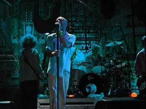 R.E.M. - Everybody Hurts (Live)  Lyrics