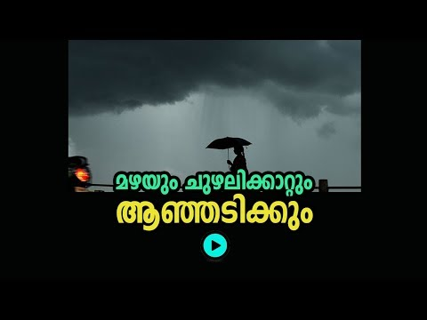 Heavy rains continue in Kerala, Schools declared leave in Thiruvananthapuram