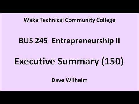 BUS 245 (150) Executive Summary
