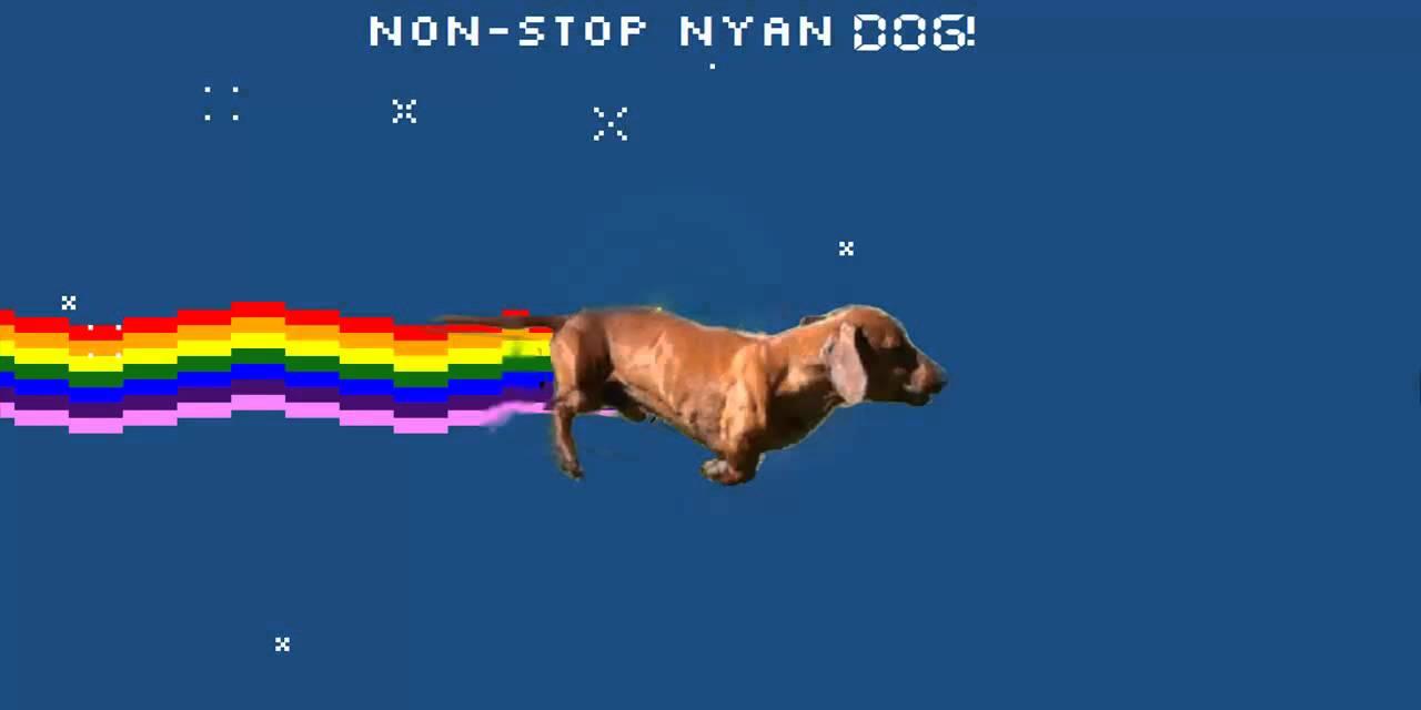Taco Dog Nyan Cat