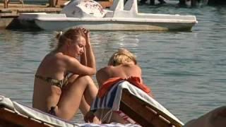 Почему акулы в Красном море нападают на туристов?