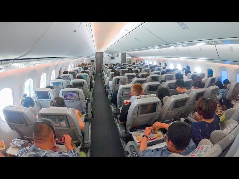 World's Best Economy? Japan Airlines 787 Shanghai to Tokyo Narita