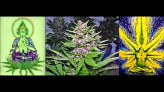 Trialogue -- Cannabis -- Terence McKenna, Ralph Abraham, Rupert Sheldrake