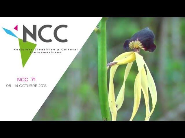 Noticiero Científico y Cultural Iberoamericano, emisión 71. 08 al 14 de octubre de 2018.
