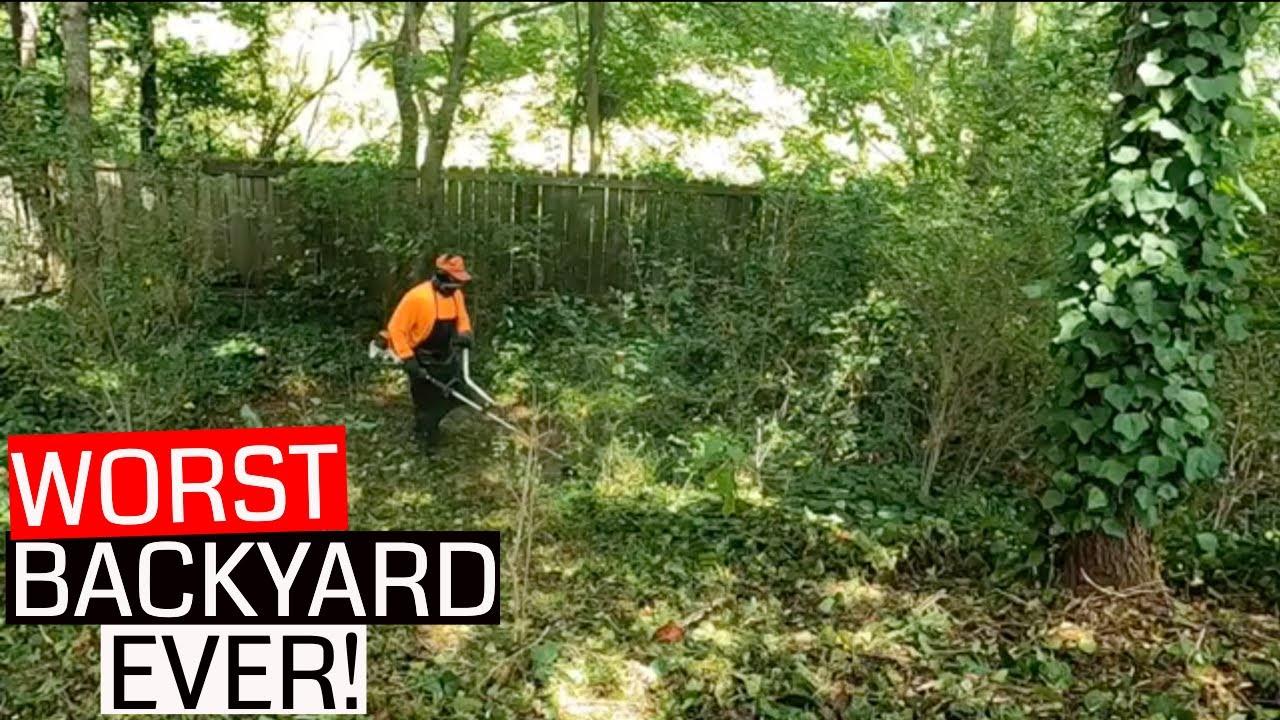 Mind BLOWING Overgrown backyard