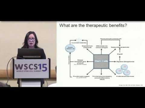 WSCS 2015: Stem Cell Therapies Using Adipose Tissue - From Fat Grafts to 3D Cultures