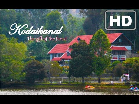Kodaikanal - The Gift of the Forest - Travel Film HD