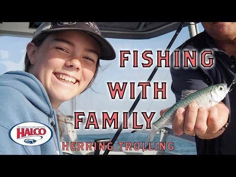 Fishing With Your Family - Herring Trolling With HALCO