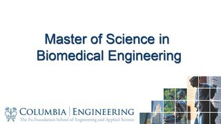 Master of Science in Biomedical Engineering thumbnail