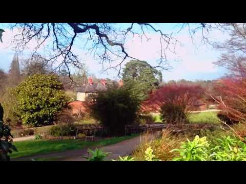 Early Spring at RHS Gardens Wisley