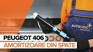 Cum se inlocuiesc amortizoare din spate pe PEUGEOT 406 TUTORIAL | AUTODOC