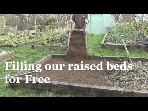 what should i fill my raised garden bed with 3