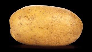 Speed Draw #1: A potato