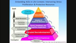 Adverse Childhood Experiences (ACES) Among Washington State's Children: Implications for Mental Health Intervention
