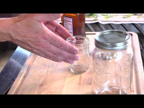 Herbscaping - Lemon Verbena