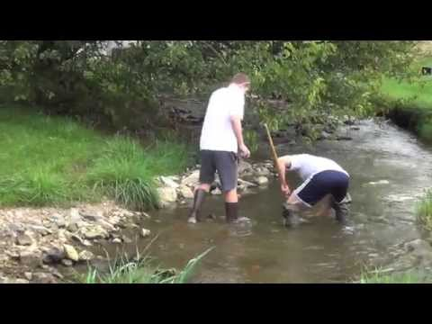 Freshwater Biology - Block 3 (2014)