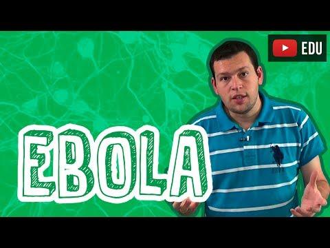 Biologia - O Vírus Ebola