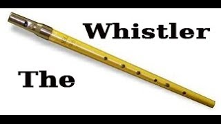 Right Here Right Now (Fatboy Slim) - Tin Whistle Cover