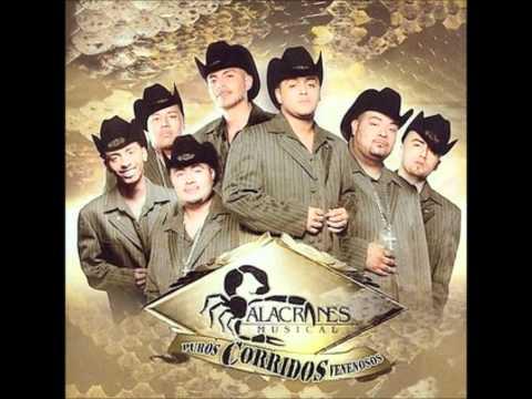 EL Coleadero - Alacranes Musical
